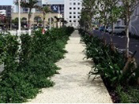 Exterior greening/